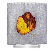 Leaf On Granite 5 - Square Shower Curtain