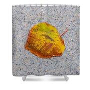 Leaf On Granite 6 - Square Shower Curtain