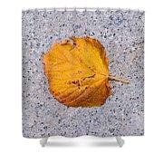 Leaf On Granite 7 - Square Shower Curtain
