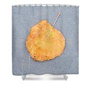 Leaf On Granite 9 - Square Shower Curtain