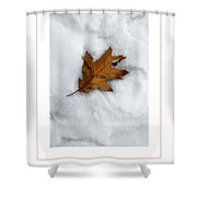 Leaf On Snow Poster Shower Curtain