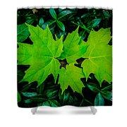 Leaf Overlay Shower Curtain