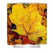 Leaf Portait 1 Shower Curtain