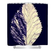 Leaf Series Twin Shade Shower Curtain