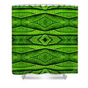 Leaf Structure Abstract Shower Curtain