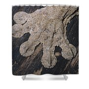 Leaf-tailed Gecko Foot Shower Curtain