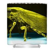 Leafhopper, Sem Shower Curtain