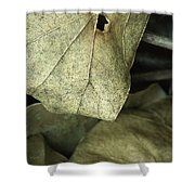 Leafpile 2 Shower Curtain