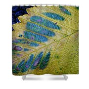 Leafscape 1 Shower Curtain
