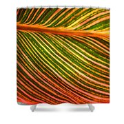 Leafscape 2 Shower Curtain