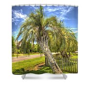 Leaning Palm Shower Curtain