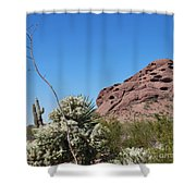 Leaning Towards The Light Shower Curtain