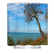 Leaning Tree Over Lake Shower Curtain