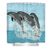 Leaping Dolphins Shower Curtain