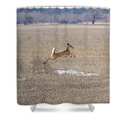 Leaping Shower Curtain