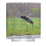 Leaping Flight Shower Curtain