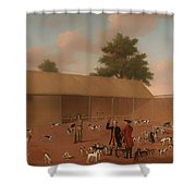 Learning About The Hounds Shower Curtain
