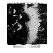 Leather Smirks  Shower Curtain