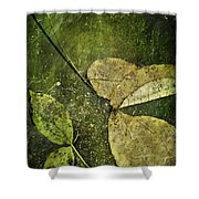 Leaves Afloat Shower Curtain