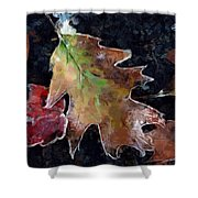 Leaves And Frost Shower Curtain
