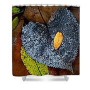 Leaves At Oak Openings Shower Curtain