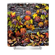 Leaves At The Levee Shower Curtain