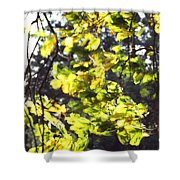 Leaves Blowing Shower Curtain