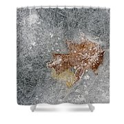 Leaves In Ice Shower Curtain