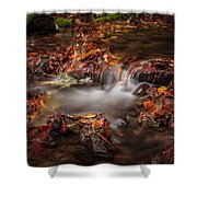 Leaves In The Creek Shower Curtain