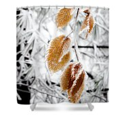 Leaves In The Frost Shower Curtain