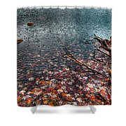 Leaves In The Lake Shower Curtain