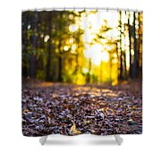 Leaves On A Forest Trail Shower Curtain by Parker Cunningham
