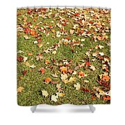 Leaves On Grass Shower Curtain