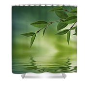 Leaves Reflecting In Water Shower Curtain by Aged Pixel