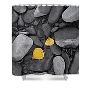Leaves With Rocks Shower Curtain