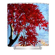 Leaves0591 Shower Curtain