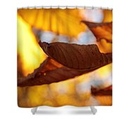 Opportunity Shower Curtain