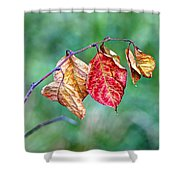 Leaving Summer Behind Shower Curtain