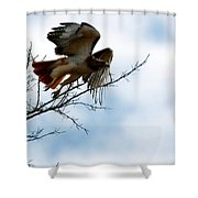 Leaving The Perch Shower Curtain