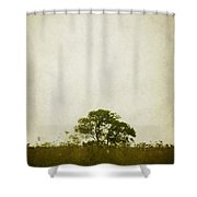 Left Alone In A Pasture Shower Curtain
