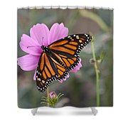 Legend Of The Butterfly - Monarch Butterfly - Casper Wyoming Shower Curtain