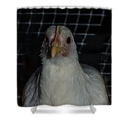 Leghorn Chicken Shower Curtain