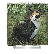 Leia Cat In Blueberries Shower Curtain