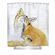 Leisure Fox Shower Curtain