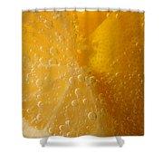 Lemon 45 Shower Curtain