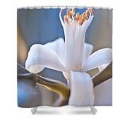 Lemon Blossom Shower Curtain