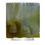 Lemon Ice Shower Curtain