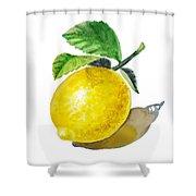 Artz Vitamins The Lemon Shower Curtain