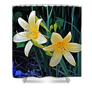 Lemon Lily Blooms Shower Curtain