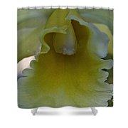 Lemon Ruffles Shower Curtain
